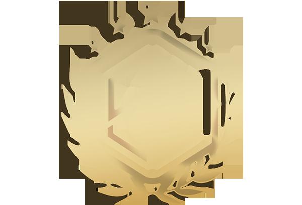 Team's logo